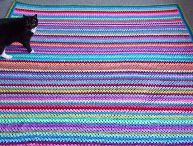 Cat on crochet blanket