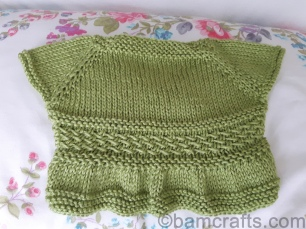 back of green baby shrug