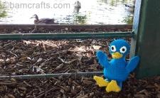 crochet-duck-family-reunion
