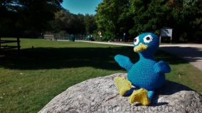 crochet-kenny-duck-at-the-park